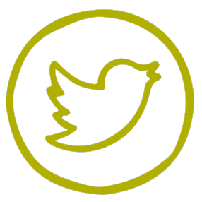 Twitter link icon